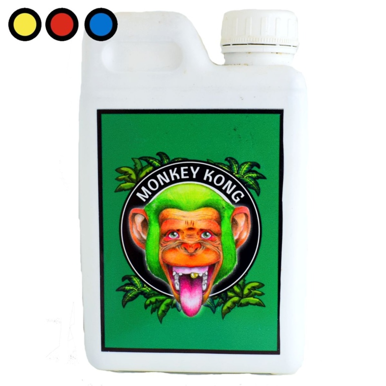 green monkey king precios